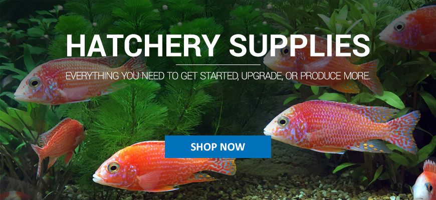 hatchery-supplies